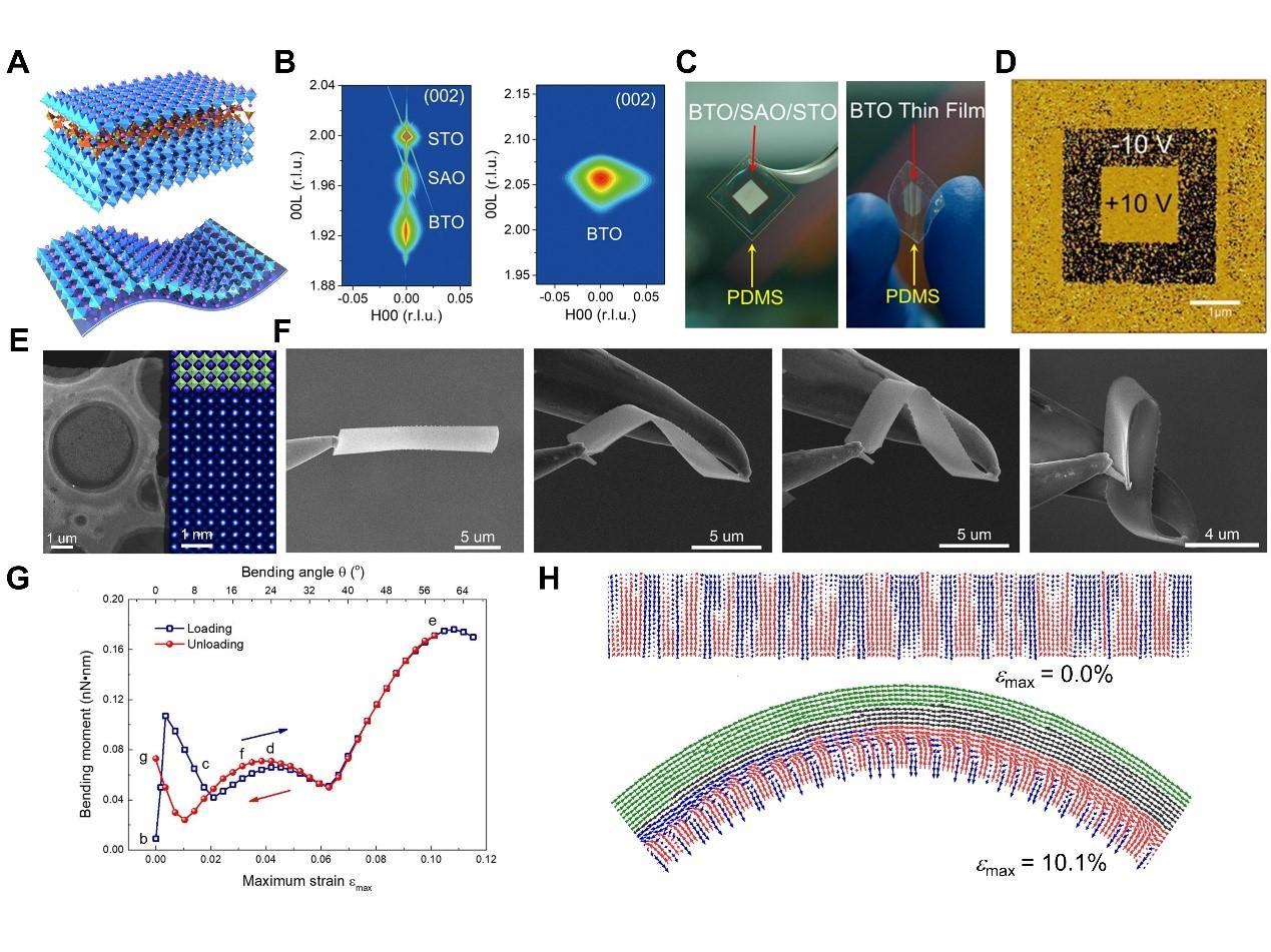 西安交大研究成果在《科学》刊发  发现单晶铁电氧化物薄膜超弹性行为