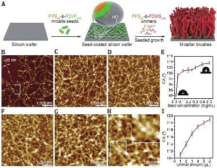 上海交大邱惠斌教授团队发展一种变革性材料表面功能化方法