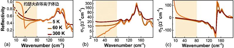 北京大学:Physical Review X报道王楠林研究组关于铜氧化物高温超导体非平衡态光学性质的研究进展