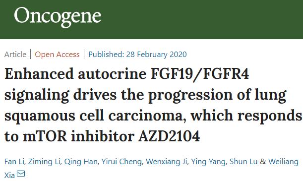 上海交大夏伟梁教授课题组发表Oncogene、Theranostics论文:发现成纤维细胞生长因子信号通路在肺癌调控中的新机制