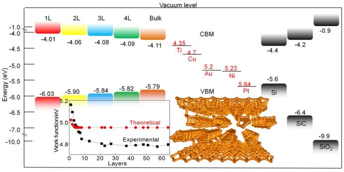 西安交大在紫磷烯特性研究领域取得重要进展