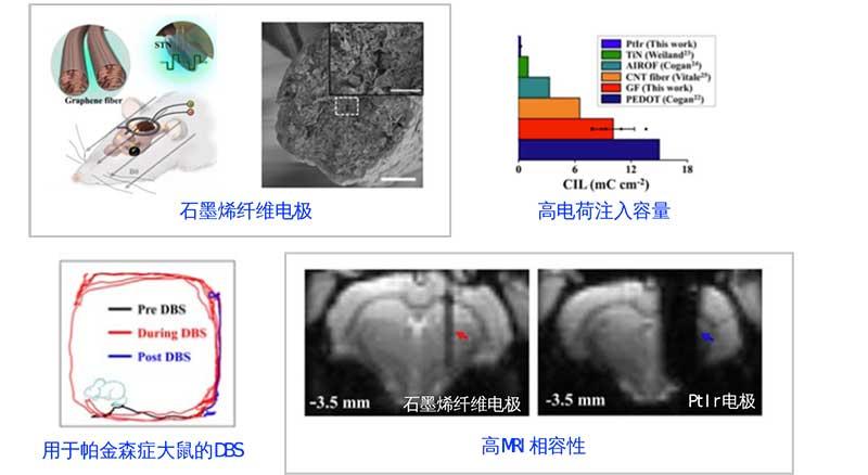 北京大学段小洁课题组及合作者在MRI兼容神经电极及DBS-fMRI联用揭示DBS对大脑调制效应方面取得重要进展