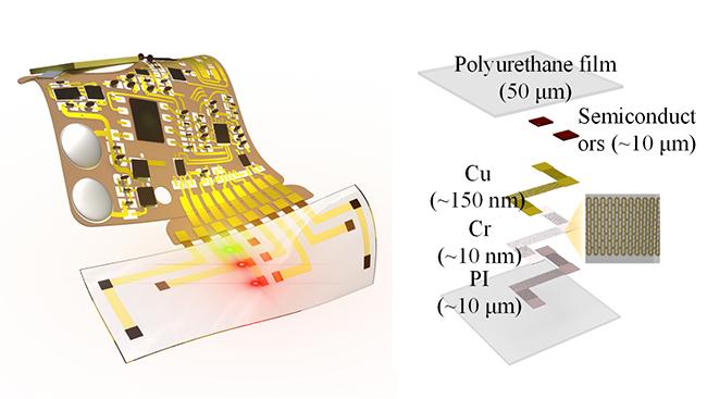 清华大学冯雪课题组在类皮肤光电器件及连续血压监测方面取得突破