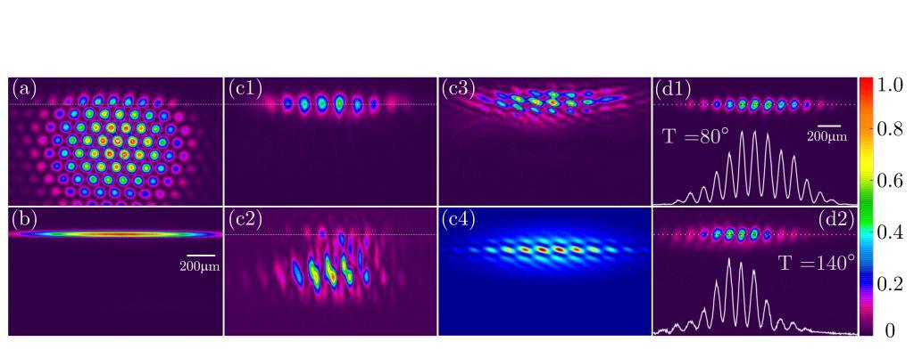 西安交大张彦鹏教授团队在非线性拓扑光子学研究方面取得新进展-第1张图片-C9联盟