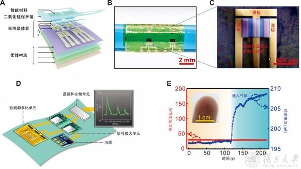 复旦大学梅永丰课题组研发柔性薄膜组装集成芯片传感器-第1张图片-C9联盟