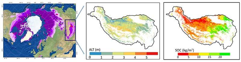 清华大学杨大文教授团队发布青藏高原冻土及土壤碳变化的环境风险评估结果