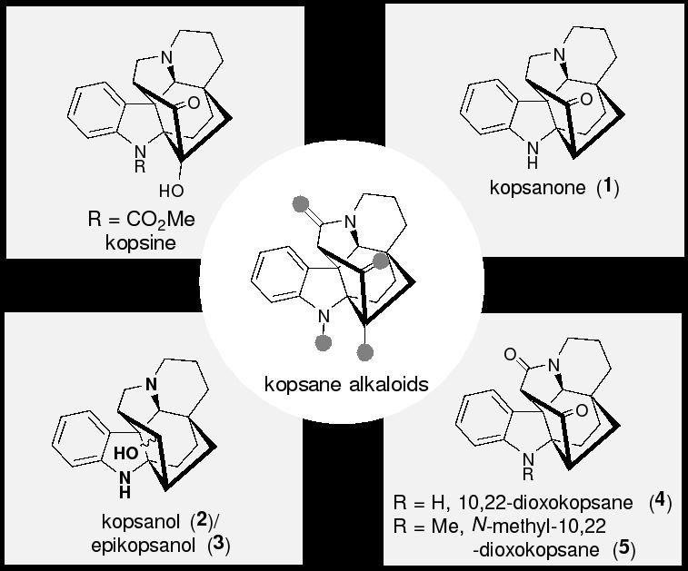 北京大学深研院叶涛课题组完成了Kopsane家族多个天然产物的不对称全合成