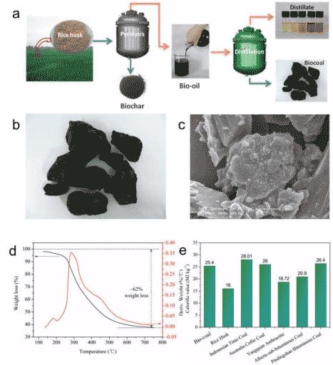 中国科大在生物质废弃物资源化利用研究方面取得重要进展
